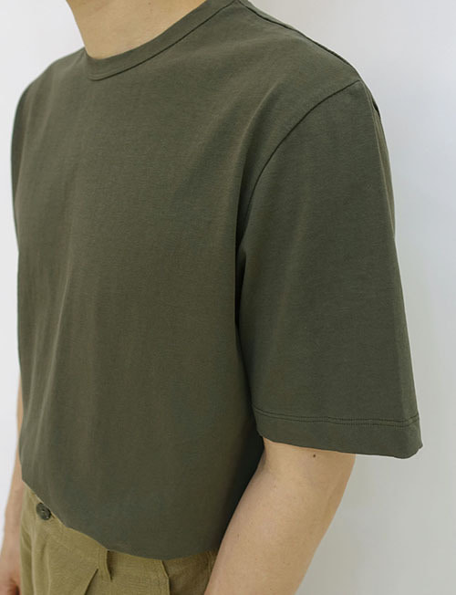premium cotton t shirt 2color